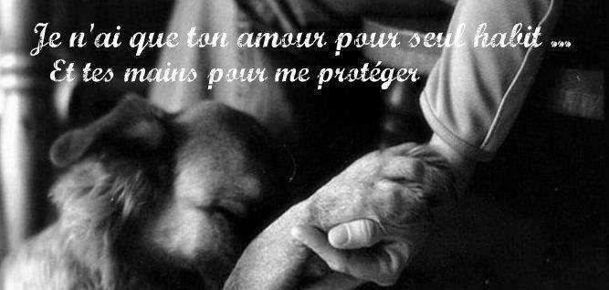 je n'ai que ton amour pour seul habit...