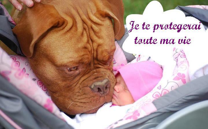 je te protégerai...