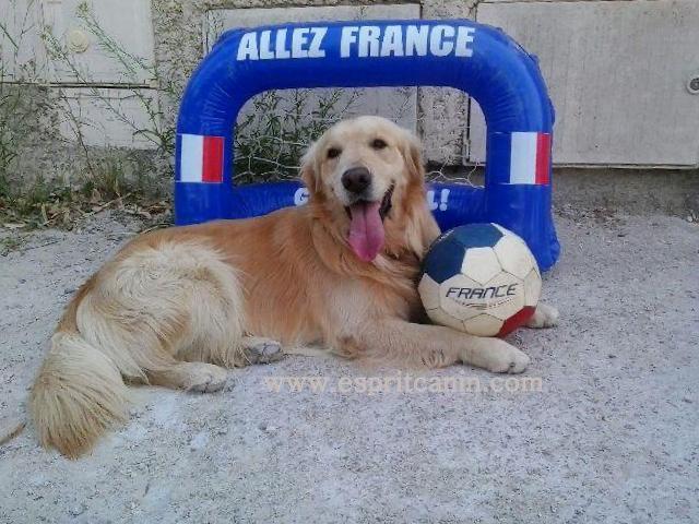 enzo new recrue pour l'équipe de France
