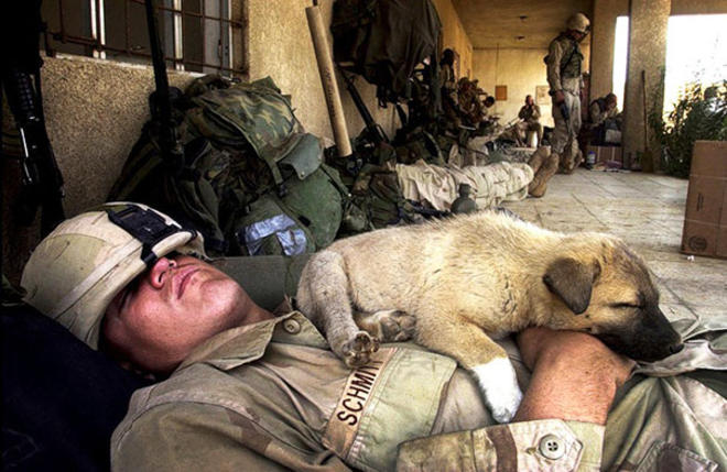 un bon soldat