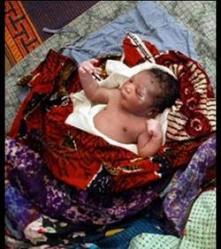 ce-bebe-a-ete-retrouve-aux-cotes-d-un-chien-qui-lui-a-sauve-la-vie-dr-ghana-news-agency-93807-w250.jpg