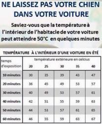 température voiture