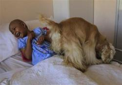 standard-un-chien-redonne-le-sourire-a-un-enfant-malade.jpg