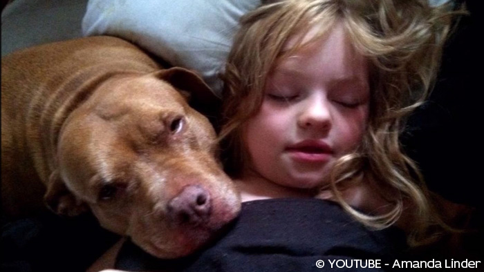 une fille autiste de 6 ans et son pit bull