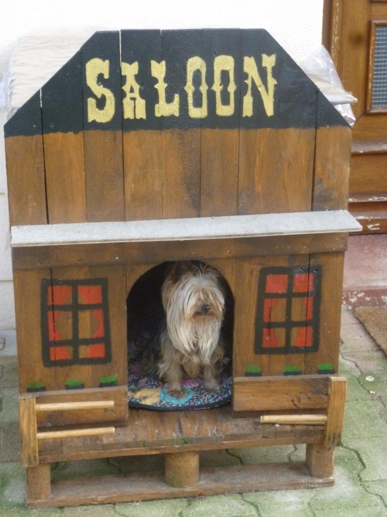 1102349-saloon-pour-chien--b17f1_big