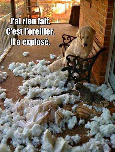 oups !!!!!