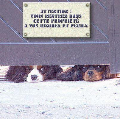 attention ! Danger !!!!!!!