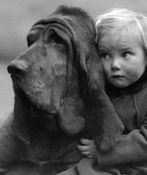 le meilleur ami