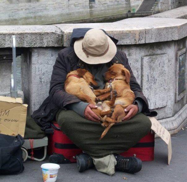l'affection et l'amour n'a pas de prix