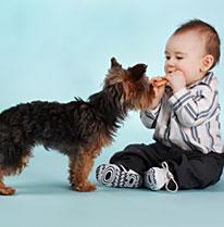 bg-naitre-grandir-preparer-chien-bebe-1