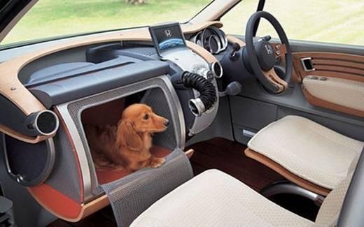 chine-boite-a-chien-pour-voiture-japonaise