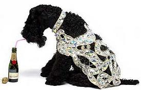 manteau de diamants 150 000$
