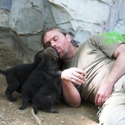 Shaun Ellis gardien des louveteaux