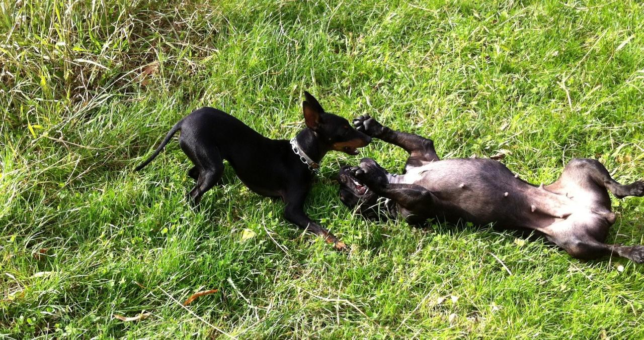 Dita & Fiona
