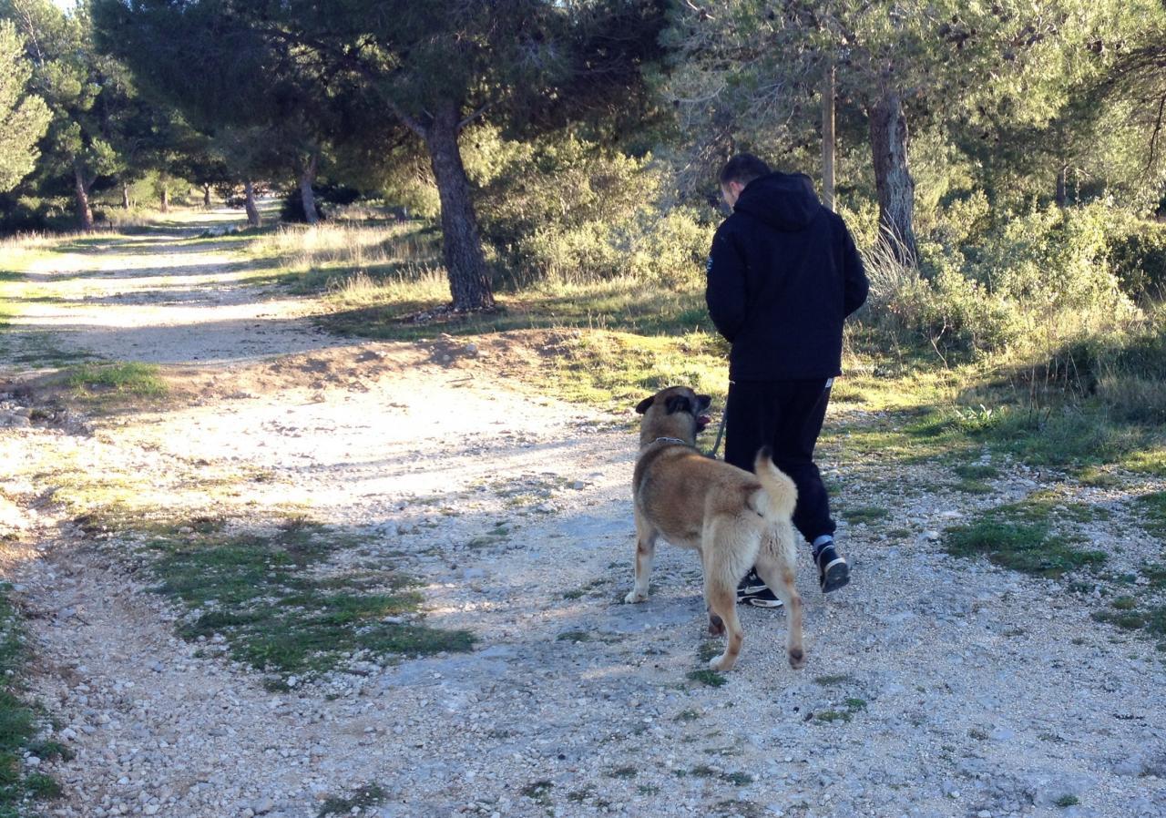 Marche aux pieds avec junior dans la colline